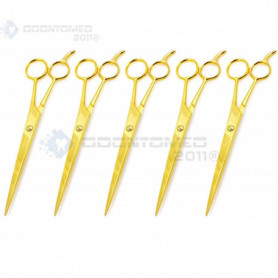 """OdontoMed2011® 5 Pieces 6.5"""" Stainless Steel Full Gold Barber Hair Cutting Salon Scissors 6 1/2"""" ODM"""